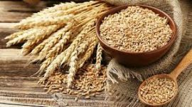 شکاف بین قیمت آرد دولتی و آرد آزاد موجب سوءاستفاده اخلالگران اقتصادی شده است